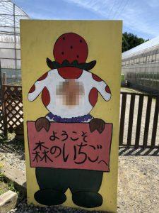 香川グルメ VACCA 森のいちご